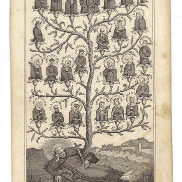 L'albero francescano di Alcan