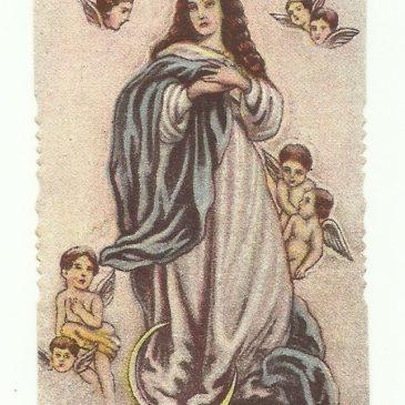 I santini fustellati del Cav. G. Canedi