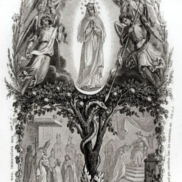 La Festa dell'Immacolata Concezione
