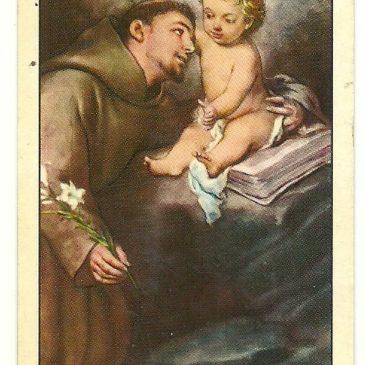 Sant'Antonio dalla barba nera…